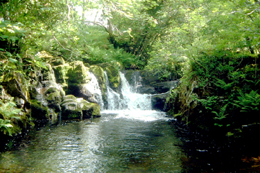 A waterfall in the Brecon Beacons