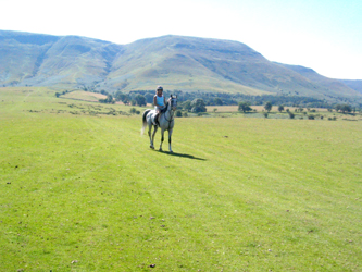Horse Riding on the Brecon Beacons